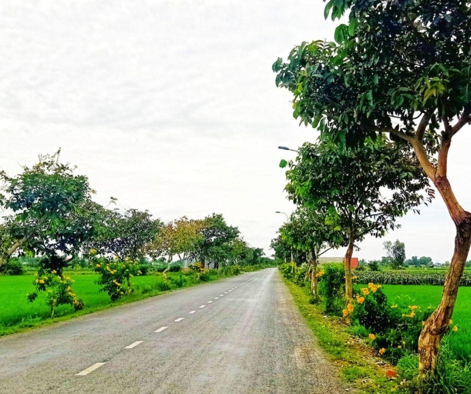 Đường Cao Thị Mai, huyện Tân Trụ