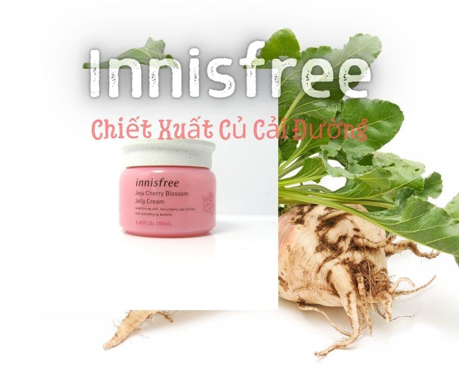 Kem Dưỡng Trắng Da Innisfree cung cấp độ ẩm dồi dào cho làn da khô và xỉn màu